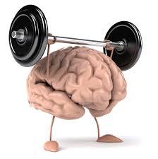 cerebro-en-forma